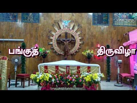 Feast of St. Anthony 2018, Dharavi Parish, Mumbai