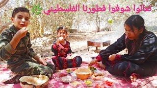 فطور فلسطيني بإمتياز🌿تحت شجر الزيتون❤️