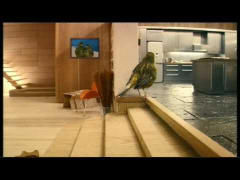 "Robinsons ""Be Natural"" Bird House advert 2009 - bird getting home"
