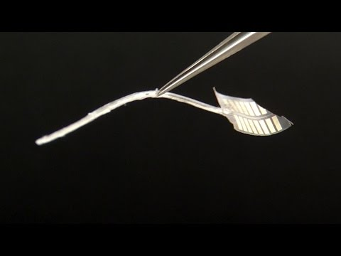 Science of Innovation: Micro-Fabrication for Cochlear Implants