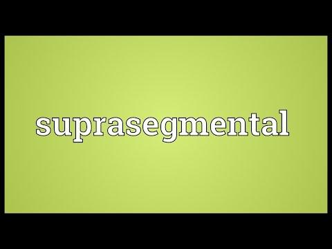 Header of suprasegmental