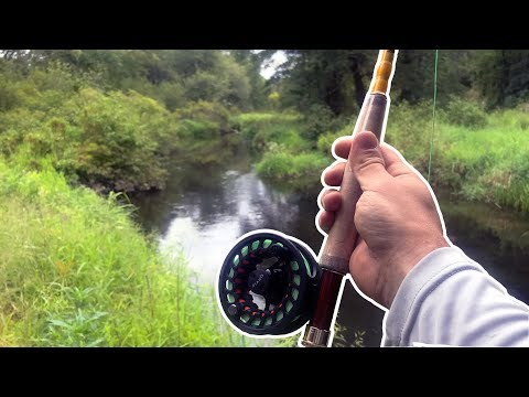 Connecticut Creek Fly Fishing Mission