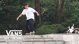 Cross-Pollination | Skate | VANS