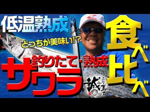 誠寿司Vol.3 サワラの釣りたてVS熟成 どっちが旨い? 炙りサワラの食べ比べ