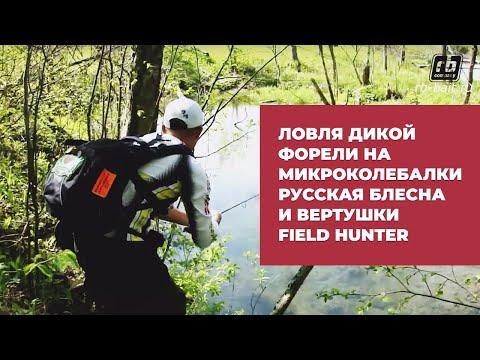ловля ручьевой форели в ленинградской области