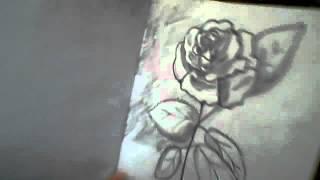 Девочке 12 лет а так Красиво рисует!!!