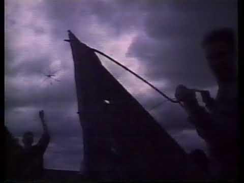The Bible! - Graceland