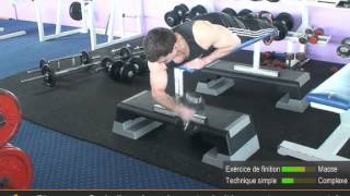 Vidéo des flexions de bras allongé sur le ventre en prise marteau concentré