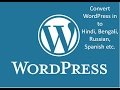 How To Add Google Translate in WordPress website (Hindi)