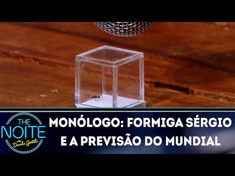 Monólogo: Formiga Sérgio e a previsão do mundial  | The Noite (13/07/18)