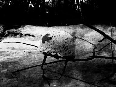 Изображение предпросмотра прочтения – ОлегКуринов представляет видеоролик кпроизведению «Айболит» К.И.Чуковского