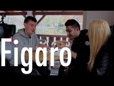 Dara // Figaro Videóverseny 2014 döntő