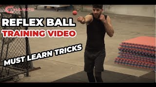 Fighting Ball Boxing Equipment With Head Band For Reflex Speed Training Box/_H Ho