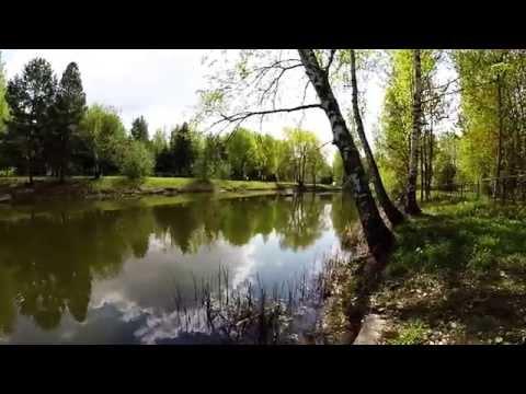 Рыбалка санаторий Сосны 12.05.2015