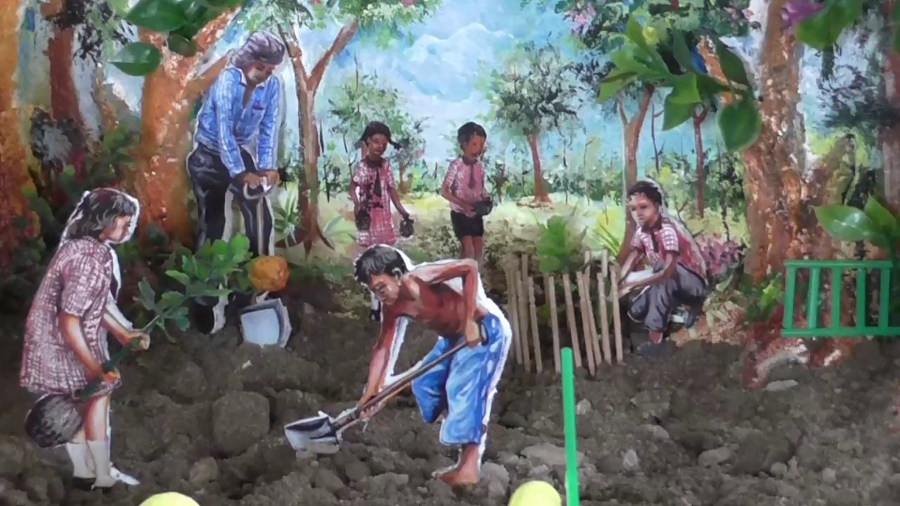 How to Make Tree Plantation School Project part 7 of 8 ...