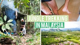 jungle trekking in malaysia giant leech attack