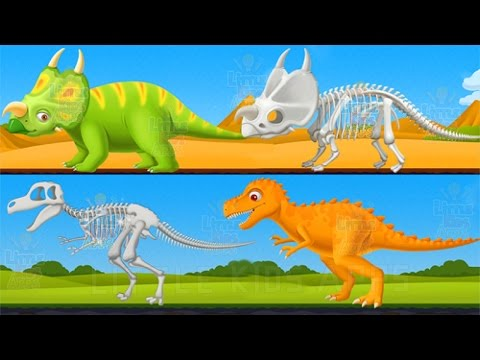 Kids Learn About Dinosaurs - Fun Educational Dinosaur Park Game for Children