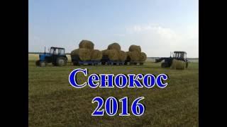 Весь сенокос 2016 года с 2 мя МТЗ 82 и КамАЗ 53215