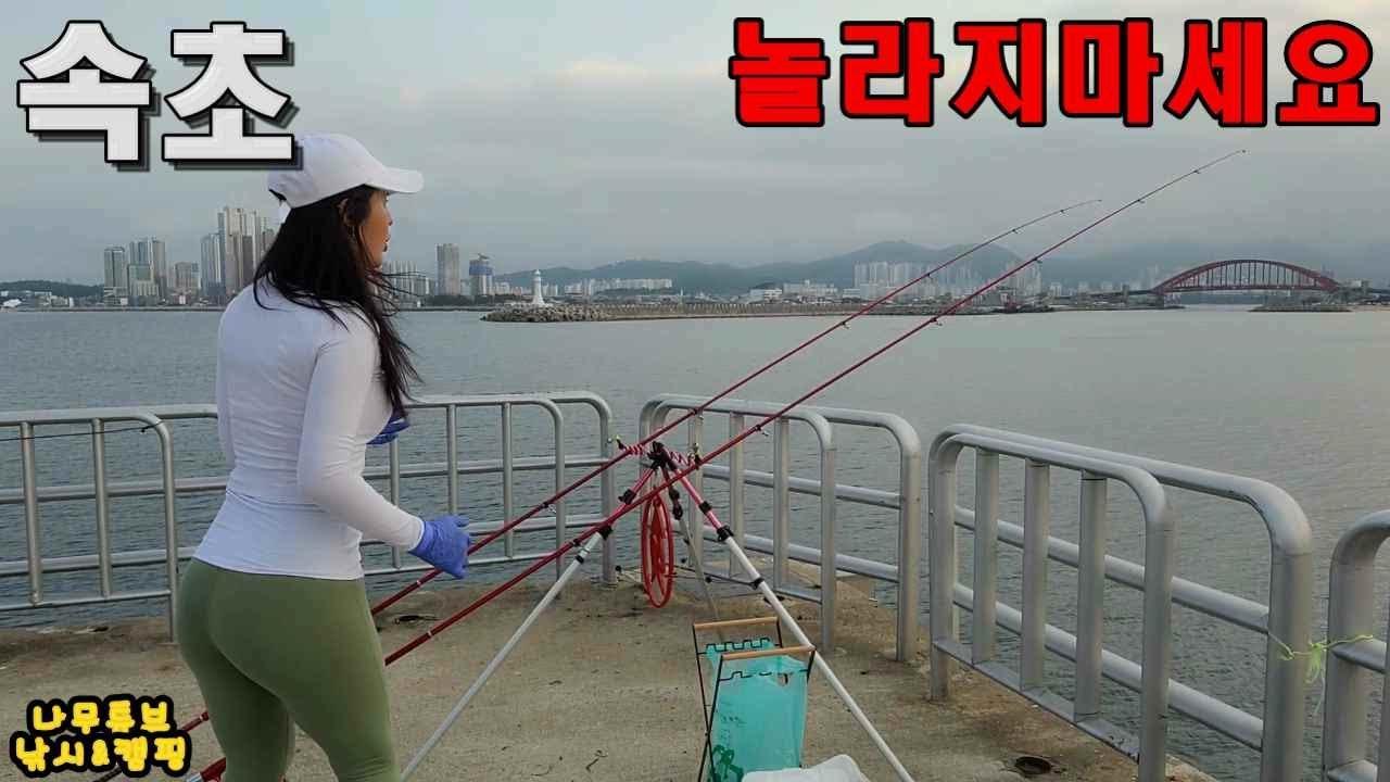 속초!동명항 낚시!한자리 20수!?바글바글!대물 물고기 비 처럼 쏟아진다!현지 초고수 등장!Fish Heaven! Sokcho! Big Fishing.초보원투낚시 포인트