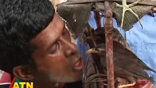 মানসিক রোগী পাখি পাগল হারুন মিয়া ।। হোসেন সোহেল ।। এটিএন নিউজ