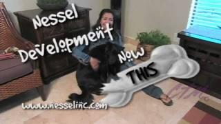 La Vita On Lover's Lane | A Dog's Day | Dallas Tx Apartments | Nessel Development