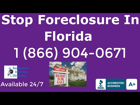 Chapter 7 Bankruptcy Fees Tampa|(866) 904-0671|Chapter 11|Chapter 13|Attorney|Lawyer|FL