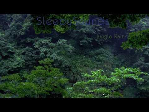 Jungle Rain – 9 hour Rain Forest Sleep Sound – Nature, Relaxation