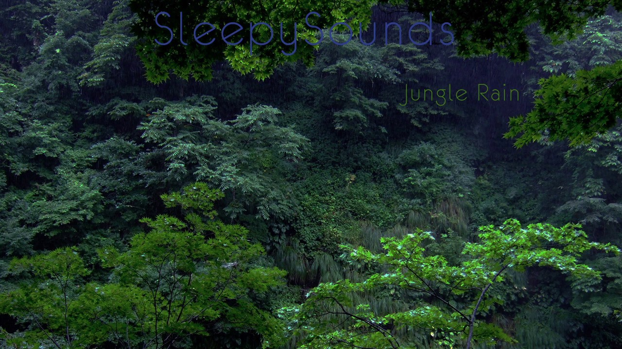 jungle rain 9 hour rain forest sleep sound nature relaxation
