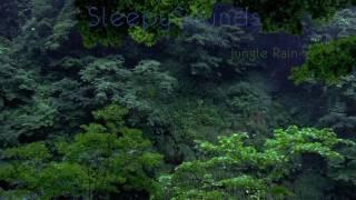 jungle rain 9 hour rain forest sleep sound nature relaxation