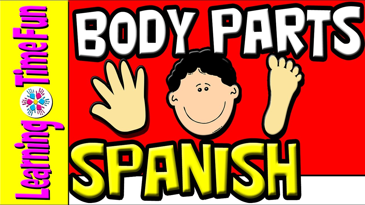 learn the body parts in spanish spanish for kids spanish for beginners fun spanish [ 1280 x 720 Pixel ]