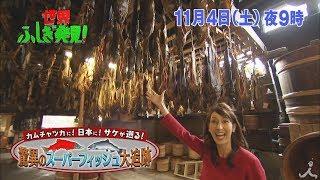 土曜よる9時 『世界ふしぎ発見!』 11月4日放送予告。 日本人が一番好き...