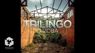 Video Trilingo - Luzoba (Original mix) download MP3, 3GP, MP4, WEBM, AVI, FLV Oktober 2018