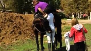 Олимпийский урок верховой езды(Олимпийский урок верховой езды. Макеевских школьников сегодня учили держаться в седле. К начинающим наездн..., 2013-09-12T17:59:56.000Z)