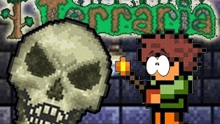 FALLING INTO MY TRAP - (Terraria Multiplayer Funny Moments #1)