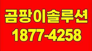 원미구 곰팡이제거, 부천 상동 아파트 곰팡이청소(단열벽…