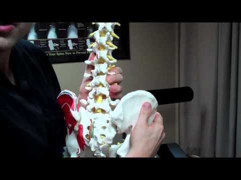 hqdefault - Back Pain Specialist Bellevue, Wa