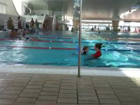 Archie at Swimming