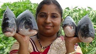 6Kg Rohu Fish Curry With Brinjal Recipe In My Village | Big Fish Baingan Masala Recipe | Sea Foods