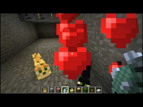 Minecraft 1.10.2 Tutorial - How to Tame Ocelots
