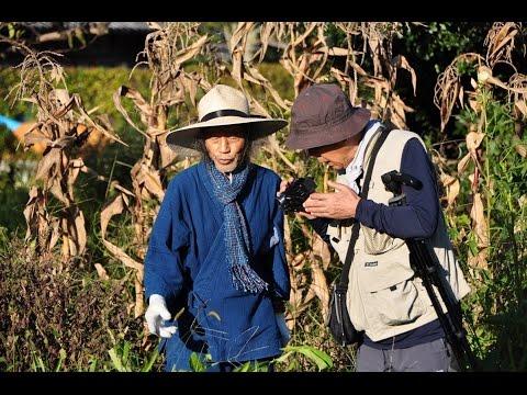 A Fieldtrip to Kawaguchi Yoshikazu's Natural Farming_(Part II: Vegetable gardens; 밭 농사)