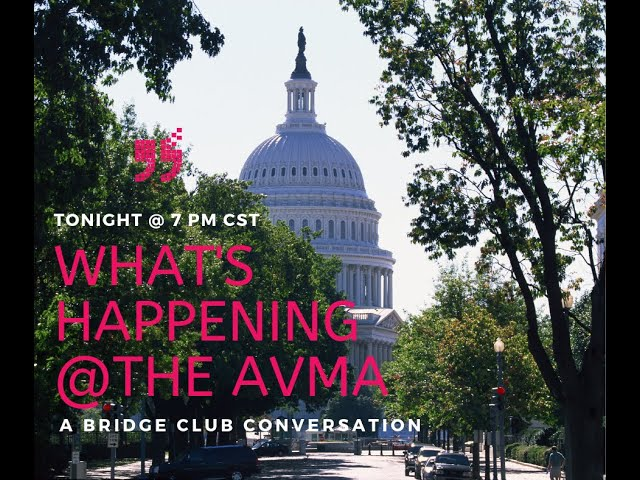 The Bridge Club What is Happening in DC at AVMAs Conference