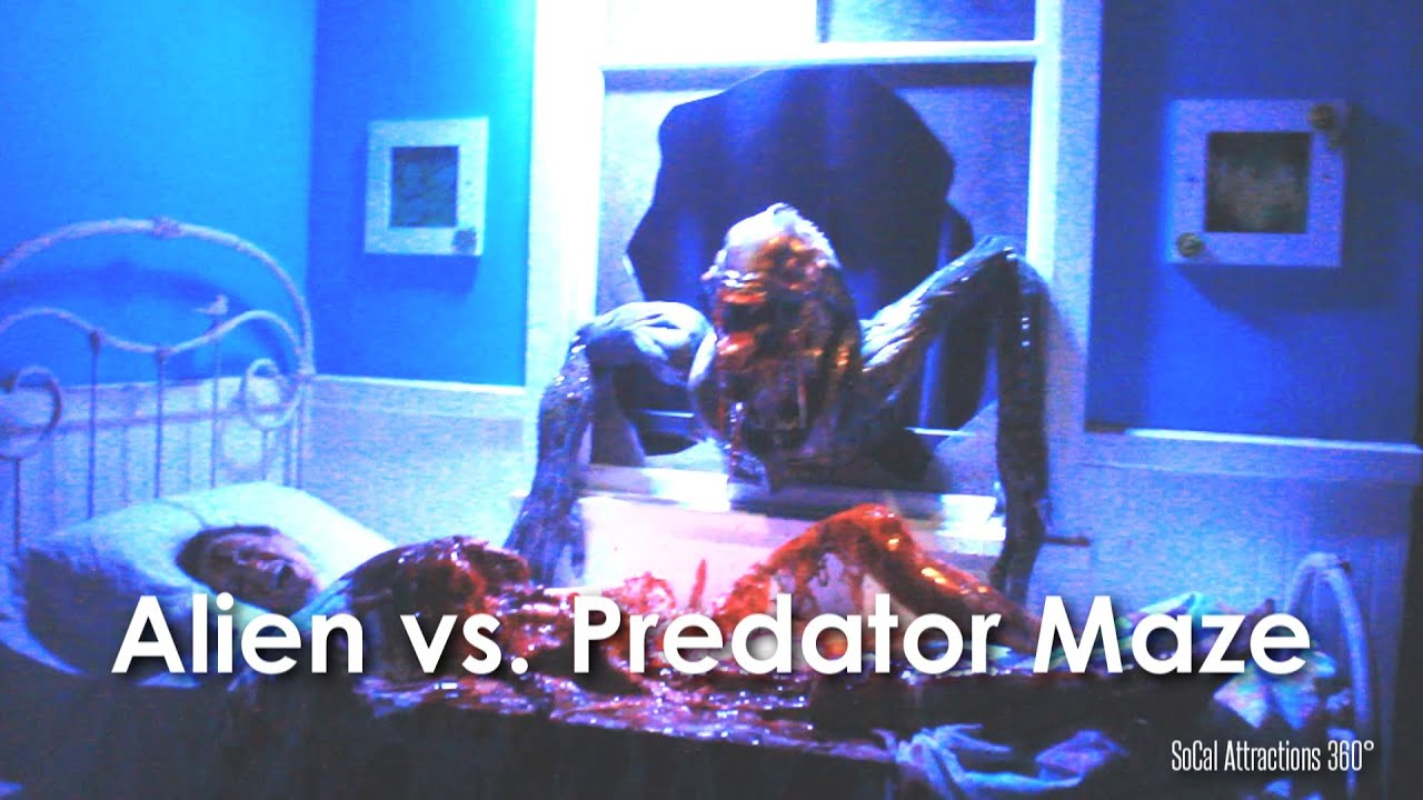 hd avp alien vs predator maze walkthrough hollywood