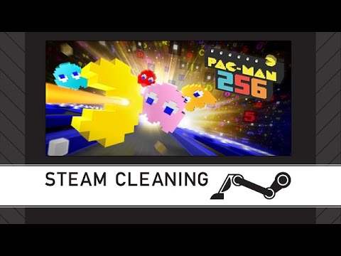 Steam Cleaning - PAC-MAN 256