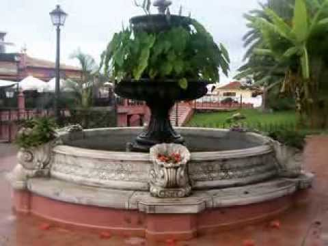 Tenerife jardin bot nico la orotava youtube - Jardines de franchy la orotava ...