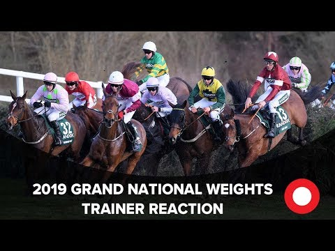 Grand National 2019 Weights - leading trainer reactions