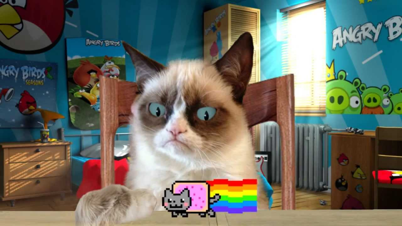 Youtube Grumpy Cat Vs Nyan Cat