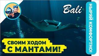 БЕСПЛАТНО с МАНТАМИ на Нуса Пенида! Подводная сьемка в экзотическом месте . Бали