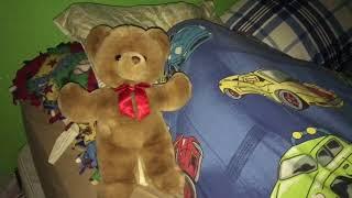 Mr. Teddy