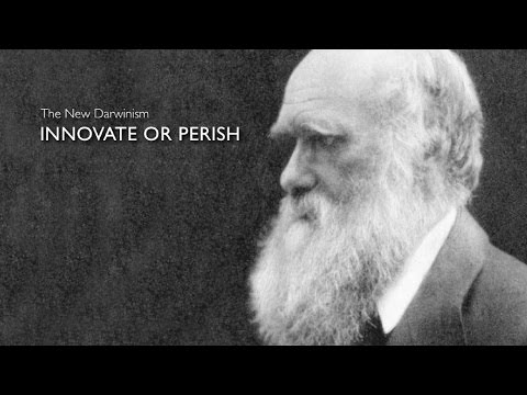 What is Innovation Part 1 - Innovate or Perish
