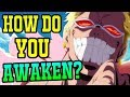 How Do Devil Fruits Awaken? - One Piece Discussion   Tekking101